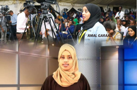 SOMWA calls on all media houses: Stop work-related exploitation